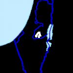 Palestina inom Israel 1967-94